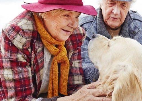 zwierzęta w domu seniora